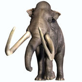 Columbian Mammoth Front Profile — Stock Photo