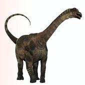 Antarctosaurus Profile — Zdjęcie stockowe