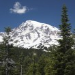 Stock Photo: Mount Rainier