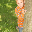 Stock Photo: Boy Looking From Behind Tree