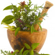 Herbs — Stock Photo #31834063