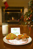 Cookies For Santa Claus — Stock Photo