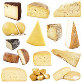 Different kinds of Italian cheese — Stock Photo