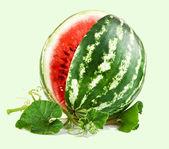 Juicy watermelon — Stock Photo