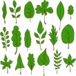 Set of vector leaves — Stock Vector