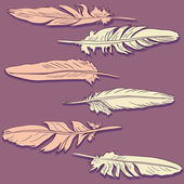 Pink and pale yellow feathers — Stock Vector
