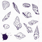 Ink drawing of shells, vector illustration — Stock Vector