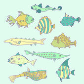 Set of cartoon fish, vector illustration — Stock Vector