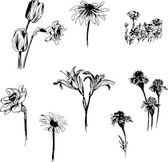 Set of ink drawing flowers — Stock Vector