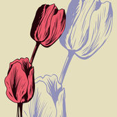 Vintage floral card with tulips — Stockvector