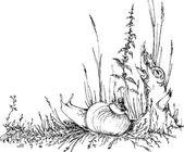 Hand drawn snail in the grass — Vector de stock
