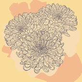 Floral card with chrysanthemum — Stok Vektör