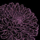 цветочная открытка с хризантема — Cтоковый вектор