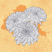 Floral card with chrysanthemum — Vettoriale Stock