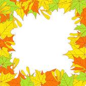 Цветочная рамка с листьями клена — Cтоковый вектор