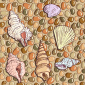 Seashells on the seashore — 图库矢量图片