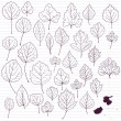 Stok Vektör: Set of linear drawing leaves at lined paper