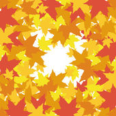 Abstract background with leaves of maple — Stock Vector