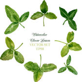 Set of watercolor drawing clover leaves — 图库矢量图片