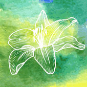 Watercolor background with linear drawing flower — Stok Vektör