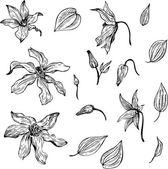 Vintage vektör çiçek set — Stok Vektör