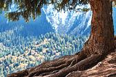 Tibet landscape. — Stock Photo