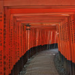 Temple of Fushimi Inari Shrine in Kyoto, Japan — Stock Photo #34664775