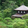 Silver pavilion at summer morning, Kyoto, Japan — Stock Photo #34664783