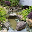 Small pond in a traditional chinese garden — Stock Photo