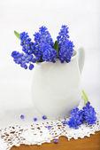 Blume des trauben-hyazinthen in keramikvase auf die weisse spitzen-hintergrund. — Stockfoto