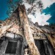 Stock Photo: Cambodia, Siem Reap, Angkor Wat
