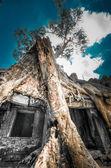 камбоджа, сием рип, ангкор-ват — Стоковое фото