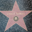Chuck Norris Hollywood Star — Stock Photo