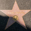 Frank Sinatra Hollywood Star — Stock Photo
