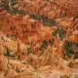 Canyon Bryce great rocks — Stock Photo