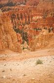 Cânion bryce belas rochas — Foto Stock