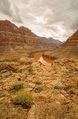 Colorado river Grand Canyon — Stock Photo