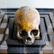 Постер, плакат: Skulls from the Killing Fields in Cambodia this happened from a