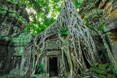 Ancient buddhist khmer temple in Angkor Wat complex, Siem Reap C — Stock Photo