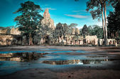 Giant tree covering Ta Prom and Angkor Wat temple, Siem Reap, Ca — Stock Photo