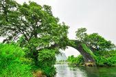 Guilin li fiume carsico paesaggio montano di yangshuo — Foto Stock