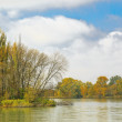 The river in autumn day — Foto Stock