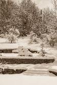Garden after snowfall, sepia — Stock Photo