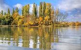 River landscape in autumn day — Foto de Stock