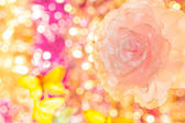 Decoration flower on background bokeh — Photo