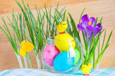 Easter composition with crocuses and colored eggs — Stock Photo