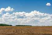 Ploughed field on the background of the blue sky  — Stock Photo