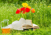 Rest on the green lawn in the garden — Stock Photo