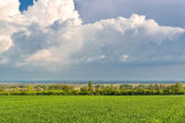 Storm clouds over fields — Stock Photo