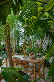 Jardim rattan — Fotografia Stock